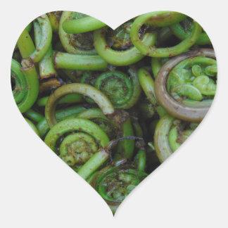 Fiddlehead Ferns Heart Sticker