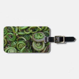 Fiddlehead Ferns Luggage Tag