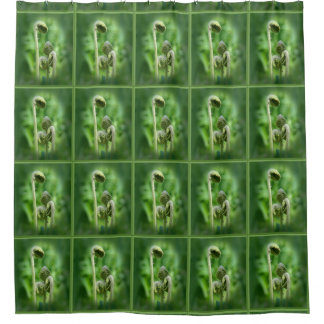 Fiddlehead Ferns Nature Pattern