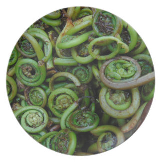 Fiddlehead Ferns Party Plate