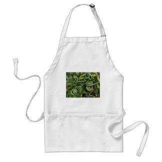 Fiddlehead Ferns Standard Apron
