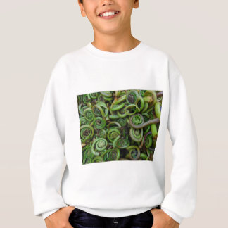 Fiddlehead Ferns Sweatshirt
