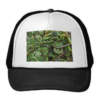 Fiddlehead Ferns Trucker Hat