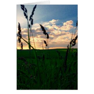 Field at Dusk - Deepest Condolences Card