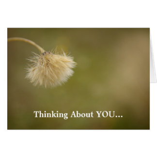 Field Flower Thinking About You Greeting Card