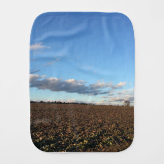 Field in spring burp cloth