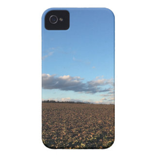 Field in spring iPhone 4 case