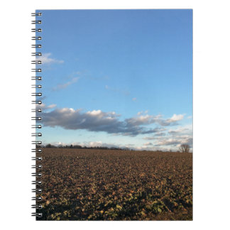 Field in spring notebook