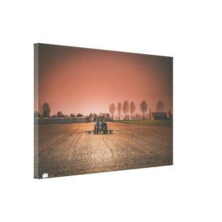 Field Landscape Single Canvas