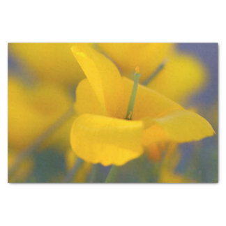 Field of blooming poppies tissue paper