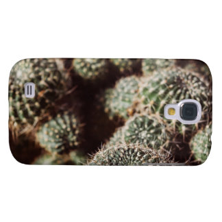 Field of Cacti, Warm Red Botanical Photograph