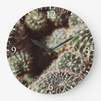 Field of Cacti, Warm Red Botanical Photograph Wall Clocks
