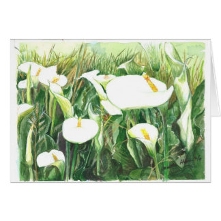 Field of Calle Lilies Card