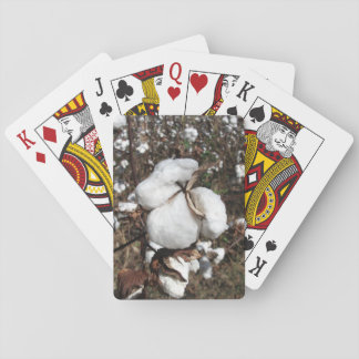 Field of Cotton, Fluffy Cotton Closeup Playing Cards