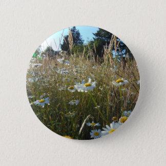 Field of Daisies 2 Inch Round Button
