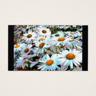 Field of Daisies Business Cards