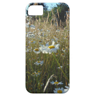Field of Daisies iPhone 5 Cover