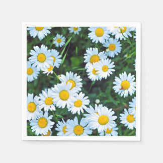 Field of Daisies Summer Party Napkin