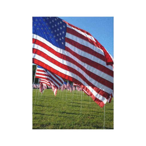 Field of Flags 2 canvas art print Gallery Wrapped Canvas