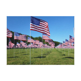 Field of Flags 3 canvas art print Canvas Print