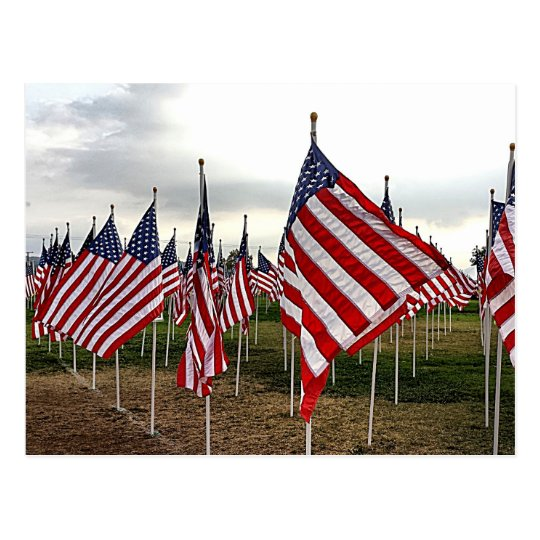 Field of Flags - Patriotic American Flags Postcard
