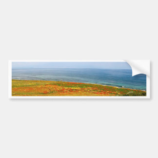 Field of Flowers Bumper Sticker