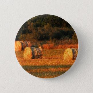 Field of hay 2 inch round button