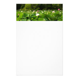 Field of Lotus Flowers Custom Stationery