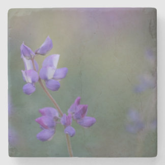Field of Lupine Stone Coaster
