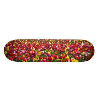 Field of multicolored tulips custom skateboard