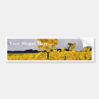 Field Of Oilseed Rape Bumper Sticker