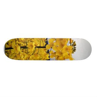 Field Of Oilseed Rape Skateboard