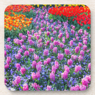 Field of pink hyacinths and red tulips coaster