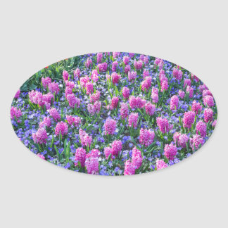 Field of pink hyacinths and red tulips oval sticker
