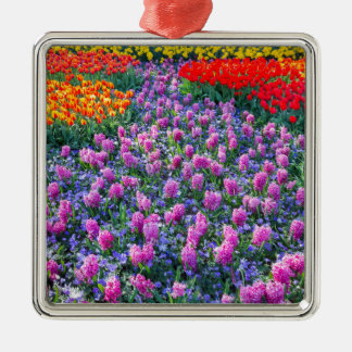 Field of pink hyacinths and red tulips Silver-Colored square ornament