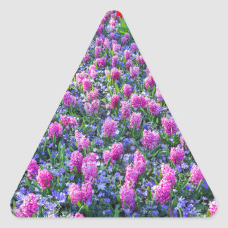 Field of pink hyacinths and red tulips triangle sticker