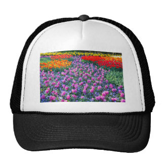 Field of pink hyacinths and red tulips trucker hat
