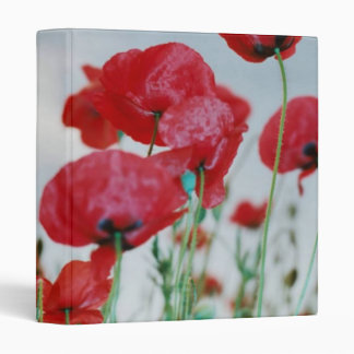 Field of Poppies Against Grey Sky 3 Ring Binder
