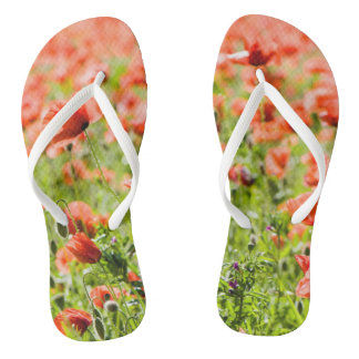 Field of poppies flip flops