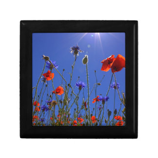 field-of-poppies gift box