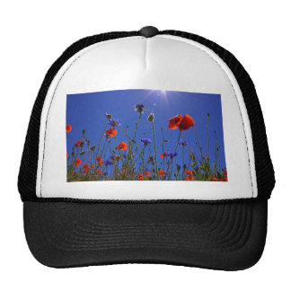 field-of-poppies trucker hat