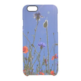 Field of Red Poppies and Blue Cornflowers Clear iPhone 6/6S Case