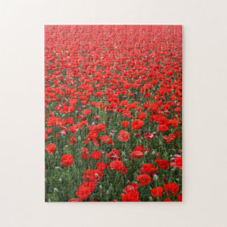 Field of Red Poppies Jigsaw Puzzle