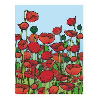 Field of red Poppy flowers Postcard