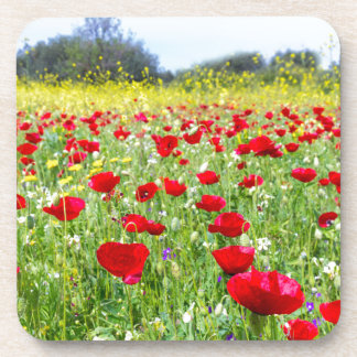 Field of red poppy flowers with yellow rapeseed coasters