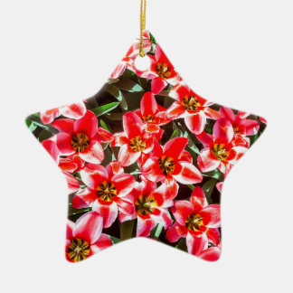 Field of red tulips from above ceramic star ornament