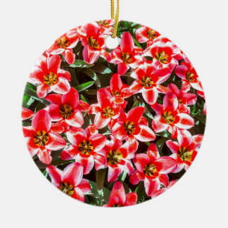 Field of red tulips from above round ceramic ornament