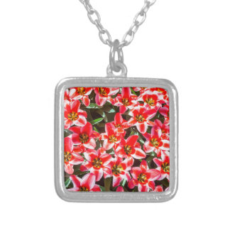 Field of red tulips from above silver plated necklace