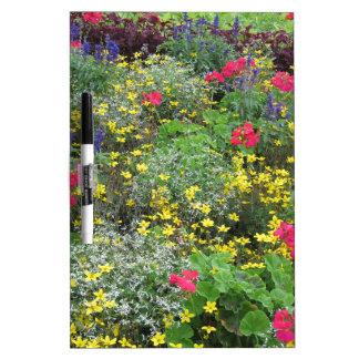 Field of spring flowers in bloom dry erase boards