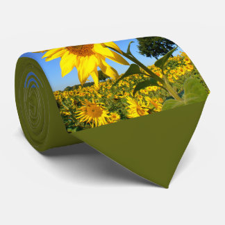 Field Of Sunflowers 1.5, Sunflower Tie